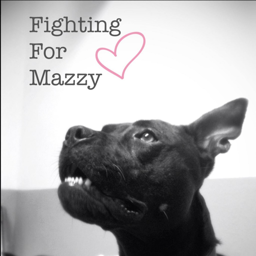 Mazzy1